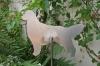 Gartenaufsteller klein - Golden Retriever